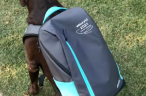 Read more about the article VMworld 2021 Backpack Announced